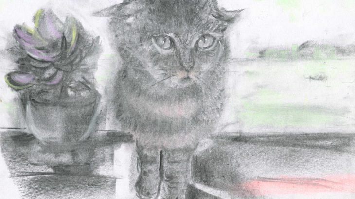 半島の猫 第五話