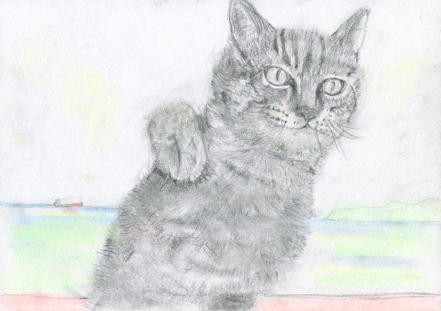 絵本ひばり猫