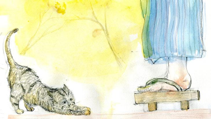 半島の猫30話
