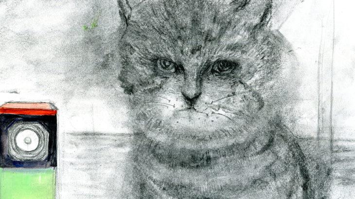 半島の猫27話