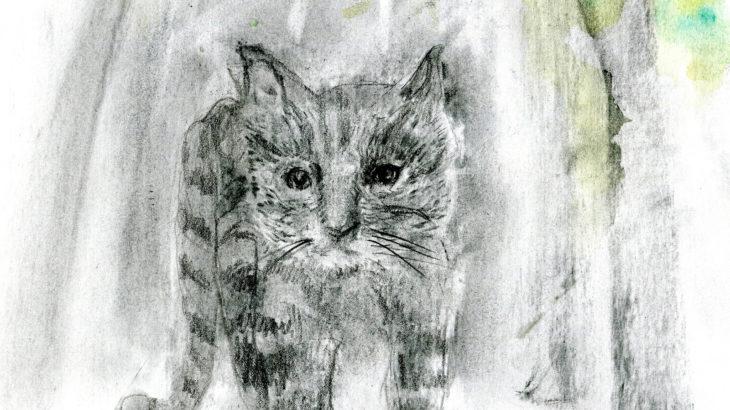 半島の猫 第二部 一話