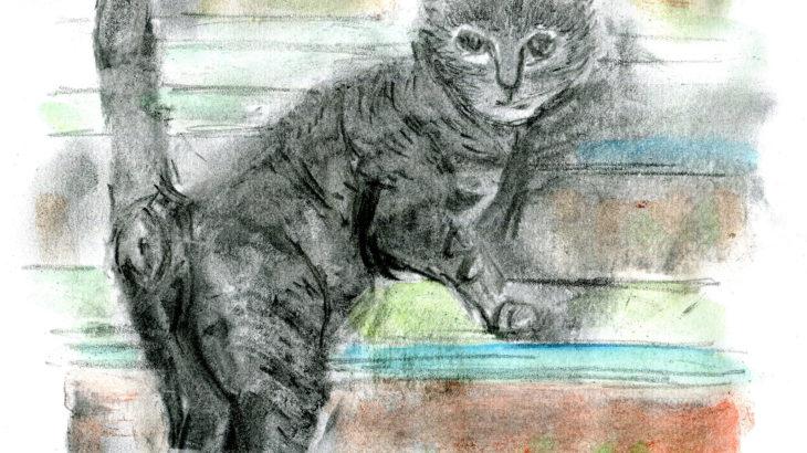 半島の猫 第二部 二話